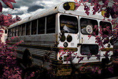Middle School Awkward Moment (mheidelberger2000) Tags: school sky bus abandoned leaves clouds ir junk experimental indianapolis infrared southside schoolbus