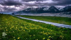 Springtime Slovakia (Motographer) Tags: nikon d750 50mm flowers landscape clouds road village blossom snow mountains rain europe slovakia cloudy tatra vysoktatry slovensko poprad trba preovregion northernslovakia subtatrabasin tatranskastrba nikkorafs50mmf18g centraleasterneurope cee fotografikartz kartz motographer