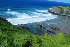 _DSC0859 (Parrasgo) Tags: espaa sunlight luz sol beach zoo mar spain seagull tiger iglesia playa rhino reflejo avestruz animales giraffe olas sunbeam vidriera cantabria norte horamagica