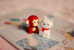 ♥ (Natália Viana) Tags: cute cat monkey miniature gato macaco miniatura natáliaviana