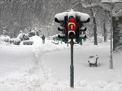 66 seconds (Dragan*) Tags: park trees winter red snow man trafficlights bench path getty signal tamajdan tasmajdan