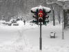 66 seconds (Dragan*) Tags: park trees winter red snow man trafficlights bench path getty signal tašmajdan tasmajdan