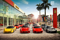 Morning Glory (anType) Tags: red italy white sports car yellow silver italian asia group convertible chinesenewyear ferrari exotic cny malaysia pj gathering kualalumpur kl luxury coupe scuderia supercar v8 petalingjaya sportscar f430 combo 430 v12 575m 360modena f430spider 599gtb rossofuoco rossocorsa worldcars gunmetalgrey 599gto giallomodena rossoscuderia 458italia argentonurburgring grigiosilverstone nazaitalia biancoavus focm ferrariownersclubmalaysia