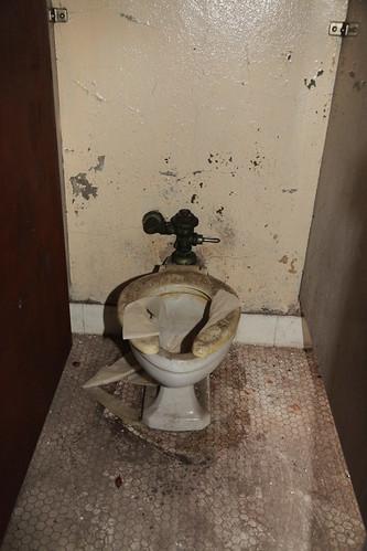 Time machine toilet