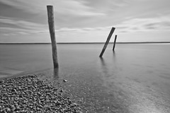 Corinella poles. (Adam J Wesley) Tags: longexposure seascape victoria mangrove westernportbay tenbypoint corinella elementsorganizer
