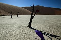 Namibia - Dead vlei (Andrew Wilson 70) Tags: africa blue red sky tree contrast landscape dead sand purple desert african dunes dune surreal safari stark namibia deadvlei andrewwilson purpleumbrella ajwilson70hotmailcom andrewwilsonnamibia
