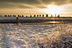 snowy sunrise (loco's photos) Tags: road trees winter light sky sun white snow storm cold ice grass mailbox sunrise season landscape gold golden frozen italian pentax vogue sunburst rays kr tone starburst wintry da15limited photovogue pentaxkr smcpda15f40edal