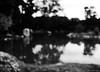 Summer Memories / Memorias del verano (Claudio.Ar) Tags: trees winter shadow summer bw blur fall nature topf25 water argentina season japanesegarden spring buenosaires sony ghost dsc h9 jardínjaponés claudiomufarrege saariysqualitypictures rememberthatmomentlevel1