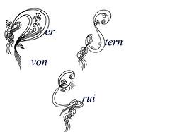 Titel_Erui (Sylvia Aljana) Tags: fantasy versalien sternenlied dersternvonerui titelschrift romansaga