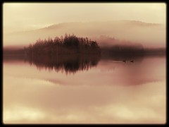 A vision of Loch Ard, felt rather than seen. (explore) (kenny barker) Tags: morning trees winter mist nature water landscape lumix dawn scotland loch trossachs reflaction lochard kinlochard landscapeuk panasoniclumixgf1 welcomeuk kennybarker