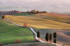 Tuscan Glow (Tommaso Renzi) Tags: pienza valdorcia gladiator gladiatore tuscanyhilsrollingcollinesunsettramonto