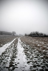 Winter mist (-Camilla) Tags: road winter white mist cold tree field landscape grey bush frost sweden path silouette farmland pale todo srmland leadingline flickrstruereflection1 flickrstruereflection2 flickrstruereflection3