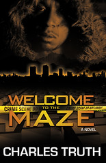 "Welcome to the Maze Book Cover • <a style=""font-size:0.8em;"" href=""http://www.flickr.com/photos/72029511@N05/7058626403/"" target=""_blank"">View on Flickr</a>"