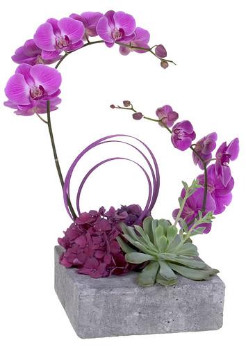 Orchid Paradise— David Kesler, Floral Design Institute, Inc., in Portland, Ore.