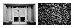 (adrian_t) Tags: bw 35mm diptych kodaktrix400 d7611 minoltafreedomiii