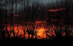 Nuit de feu... Light the fire... #Darktable #FujiX-S1 (ImAges ImprObables) Tags: soleil crest ciel nuage commune nuit arbre feu contrejour coucherdesoleil drme traitement rhnealpes darktable fujixs1