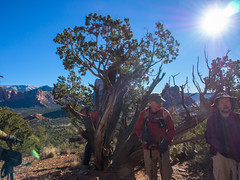 P1120010.jpg (Alan Gore) Tags: arizona nature hiking cathedralrock westerners