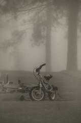Yesterday's Fun (flashfix) Tags: trees blackandwhite mist ontario canada nature weather bike fog nikon ottawa wheels mothernature 2016 thickfog backyardphotography trainingwheel d7000 55mm300mm 2016inphotos may032016