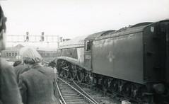 img600 (OldRailPics) Tags: newcastle steam kingfisher british locomotive railways 60024