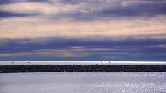 La mer du matin (Amanclos) Tags: morning sky sun reflection water colors clouds port canon soleil juin eau waves reflet ciel nuages matin waterscape portlanouvelle canoneos5dmarkiii portalnouvelle