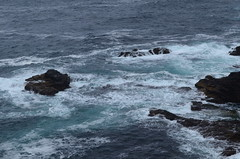 179_Eshaness (monika & manfred) Tags: nature landscape scotland wind walk hike mm shetlands coastalwalk eshaness shetlandislands shetlandisles holidays3