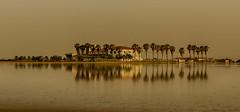 8145 (G de Tena) Tags: espaa lago casa agua europa palmeras pantano cielo reflejo isla reflejos