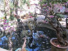 IMG_2688.JPG (Willem vdh) Tags: china asia yunnan tonghai 2011