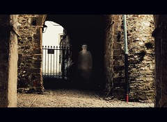 portraiture ('kafkaesque') - entrance to the castle (macfred64) Tags: scary nikon fear doorway portraiture novel nightmare d200 kafka textured kafkaesque thecastle nikkor1850mm vintagetones magicunicornverybest magicunicornmasterpiece