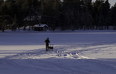 Returning from the Store. Nellim, Finnish Lapland (Voimki) Tags: winter snow forest finland arctic logcabin lapland frozenlake skitracks trailmarker kicksled kneelengthboots nellim manwithkicksled usingakicksledfortransport figureinblackleathers