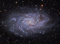 M33 NGC 598 The Triangulum Galaxy (RGB) (Terry Hancock www.downunderobservatory.com) Tags: camera sky color monochrome field wheel night stars spiral photography mono pier backyard fotografie williams photos thomas space shed science images off astro bach observatory telescope ngc598 filter galaxy m33 terry astronomy imaging triangulum pinwheel hancock messier ccd universe cosmos axis paramount luminance optics tmb osc teleskop astronomie byo deepsky guider starlightxpress flattener Astrometrydotnet:status=solved qhy5 130ss Astrometrydotnet:version=14400 at2ff mks4000 qhy9m gt110s wwwdownunderobservatorycom wo68mm Astrometrydotnet:id=alpha20120331194803
