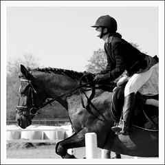 S. (feldweg) Tags: horse girl caballo cheval jumping cavallo pferd horseback turnier reiten hest horseriding kon loh springen galope reitstall hausturnier springturnier