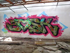 Bosk (soulroach) Tags: new york ny abandoned island graffiti long tsu bosk