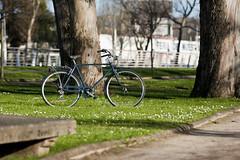 Biciclasica Merida Azul. (Biciclasica.com) Tags: azul vintage italia blu bicicleta paseo merida bici monte gijon grappa clasica alforjas clásicas biciclasica