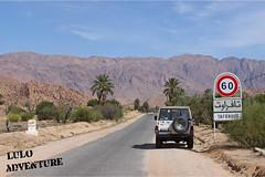 Morocco 2011 - Trafaout Road (adolfo_lulo) Tags: sand desert jeep mud offroad 4x4 dunes extreme 4wd dirt morocco trips routes winch offroading rivercrossing westernsahara toyotalandcruiser winching mudding deepwater fj40 crawlers defender90 landroverdefender rockcrawling lulo xtrem bj42 hardtrails toyotaprado hj61 lj70 kzj90 hdj80 landcruiser70 sandyroads kzj70 adventuretravels warn8274 extremeroads gigglepin luloadventure caxideaventura4x4 quintanillas4x4 fzj71 chatanoff wwwcaxideaventura4x4es fzj80underwater toyotabundera warn95xp tafraoutroad