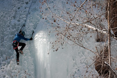 Aspens and Ice in the Scottish Gullys - Ouray Ice Park (Amicus Telemarkorum) Tags: park winter light woman sun snow black cold tree ice nature girl cool colorado branches tools diamond climbing chandelier climber february aspen harness iceclimbing iceaxe 2012 ouray crampons highstep koflach ourayicepark frontpointing jeffrueppelphotography