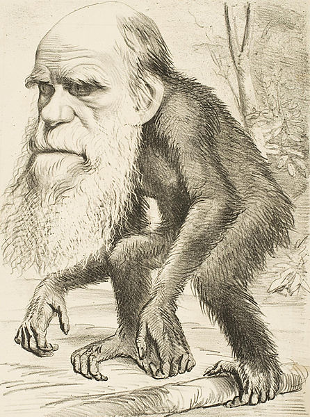 "many agreed with Darwinian pygmy scholar Sir Harry Johnston who stated that the pygmies were ""very apelike in appearance"""