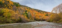 Autumn Colours I (Tony9510) Tags: new autumn nikon sigma zealand otago 1020mm arrowtown d90