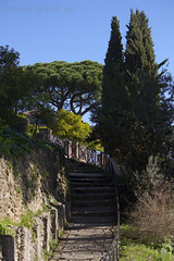 """Palatino, Orti Farnesiani • <a style=""""font-size:0.8em;"""" href=""""http://www.flickr.com/photos/89679026@N00/6974210595/"""" target=""""_blank"""">View on Flickr</a>"""