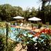 pool_tuscany