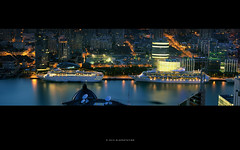 黄浦江上的邮轮  /  the Cruise Ships on the Huangpu River