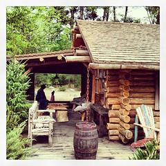 Safari Lodge #cabane #Zoo #original #france #safarilodge #lafleche #insolite #love #loup #crow #blanc #alaska #hudson #lovenight #travel #adventure #decouverte #discover #instax #instaxmini #hollidays #surprise #happybirthday #blackcouple #alaskalodge #i