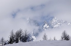 Spectateurs ravis ... (delighted audience) (Larch) Tags: winter sky italy mist mountain alps tree fog montagne alpes italia audience hiver ciel neige larch arbre soe brouillard italie autofocus valferret spectateur mlze thegalaxy valledaoste mygearandme mygearandmepremium mygearandmebronze mygearandmesilver mygearandmegold ringexcellence dblringexcellence photographyforrecreation allnaturesparadise flickrstruereflection1 rememberthatmomentlevel4 rememberthatmomentlevel1 rememberthatmomentlevel2 rememberthatmomentlevel3 rememberthatmomentlevel7 rememberthatmomentlevel5 rememberthatmomentlevel6