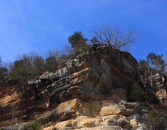 Looking Up at Roark Bluff ovr Buffalo River at Steel Creek Campground - Buffalo National River, Northwest Arkansas (danjdavis) Tags: rock arkansas bluff buffalonationalriver buffaloriver roark roarkbluff steelcreekcampground