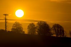 Above the tree's (technodean2000) Tags: uk silhouette wales sunrise haze nikon south lightroom d610