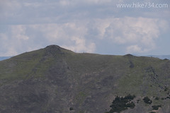 """Bighorn Sheep on Ridge • <a style=""""font-size:0.8em;"""" href=""""http://www.flickr.com/photos/63501323@N07/26332669763/"""" target=""""_blank"""">View on Flickr</a>"""