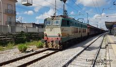 E655 206 Caimano (luciano.deruvo) Tags: trenomerci caimano e655206