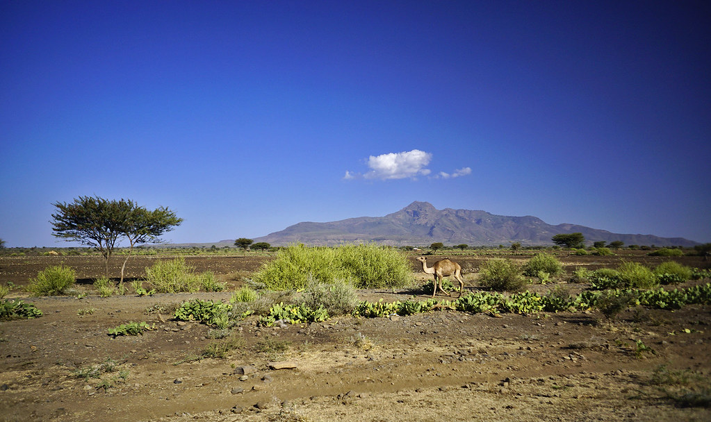 The World's Best Photos of landscape and oromia - Flickr