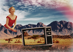 Landscape_Woman_TV (bryce.julien) Tags: blue red woman tree fashion magazine paper landscape tv mixed media retro