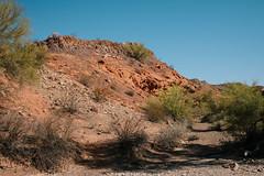 5R6K2864 (ATeshima) Tags: arizona nature havasu