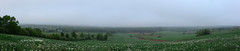 View from Steeves Mountain (Trevdog67) Tags: morning panorama fog early spring nikon foggy newbrunswick fields moncton nouveaubrunswick nikkor overlooking printemps 18300mm d7100 homesteadroad steevesmountain
